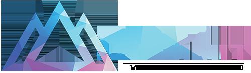 Логотип WebSummit